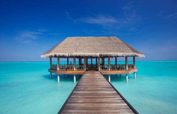 фотографии Island Hideaway at Dhonakulhi Maldives Spa Resort and Marina изображение №4