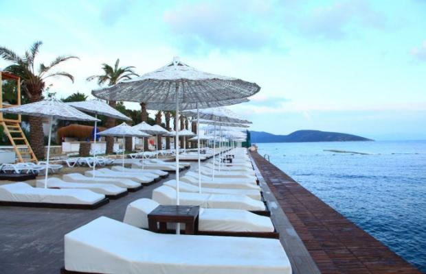 фото Bodrum Bay Resort (ex. Virgin Bodrum, Joy Club Bodrum) изображение №14