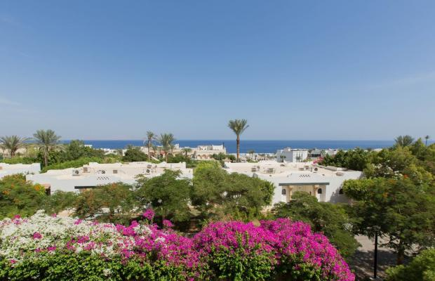 фото Poinciana Sharm Resort (ex. Grand Sharm Resort; Grand Sahara) изображение №10