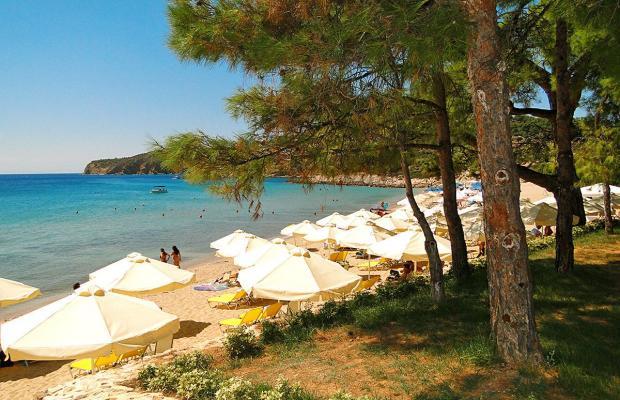 фото Royal Paradise Beach Resort & Spa изображение №2