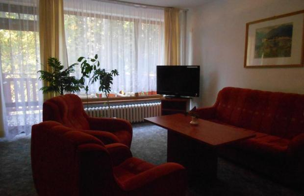 фото отеля Калина изображение №29