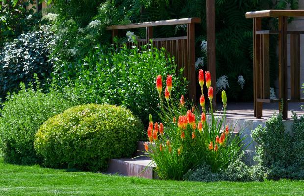 фото отеля Garden of Eden (Райский сад) изображение №9
