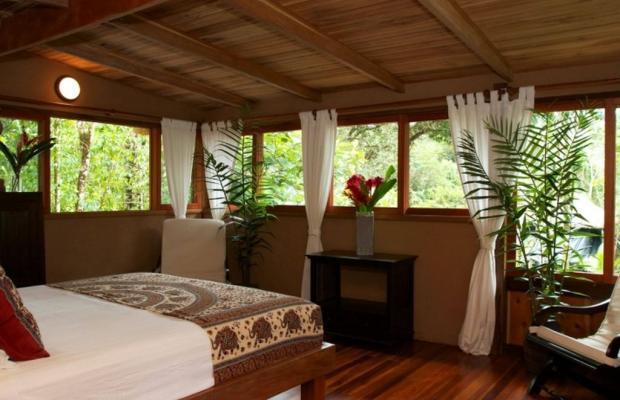 фотографии отеля Copa De Arbol Beach & Rainforest Resort изображение №11