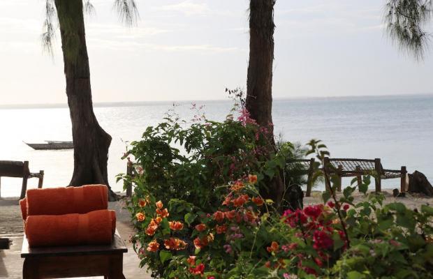фотографии отеля Michamvi Sunset Bay изображение №23
