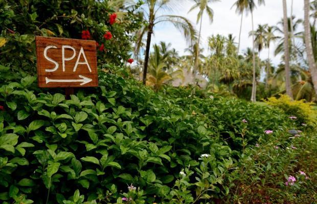 фотографии отеля Ocean Paradise Resort изображение №19