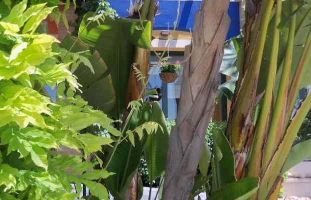 фотографии отеля La Laguna Spa & Golf изображение №63