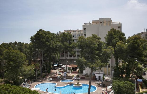 фотографии Mediterraneo изображение №8