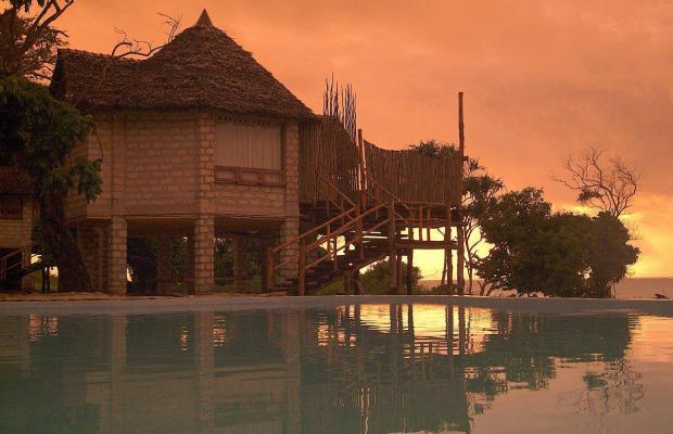 фото отеля The Cove Treehouses (ex. The Cove Retreat) изображение №21