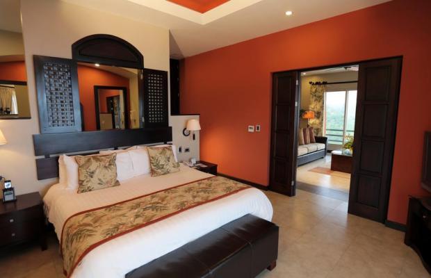 фотографии Parador Resort and Spa изображение №32