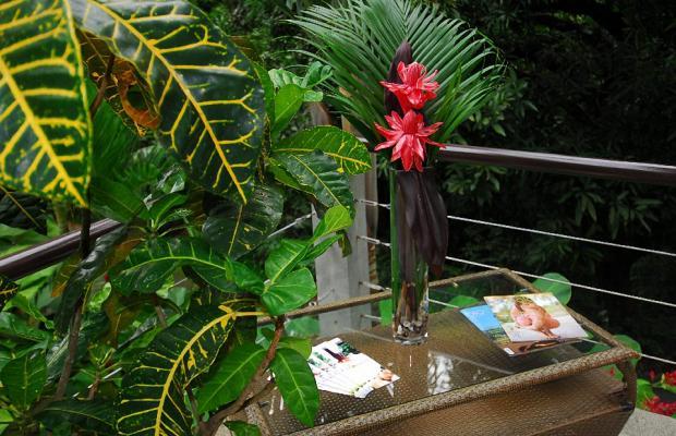 фото отеля Buena Vista Luxury Villas изображение №53