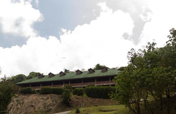 фото Hotel Heliconia изображение №14