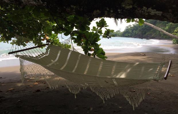 фото Casa Corcovado Jungle Lodge изображение №82