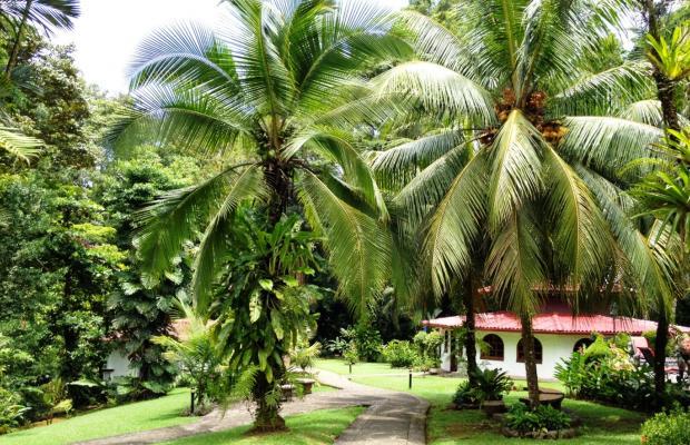 фото Casa Corcovado Jungle Lodge изображение №26