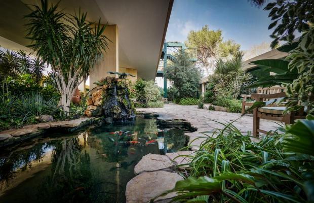 фотографии отеля Carmel Forest Spa Resort by Isrotel Exclusive Collection изображение №11