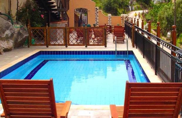 фото Aristotelis Ithaca Apartments изображение №2