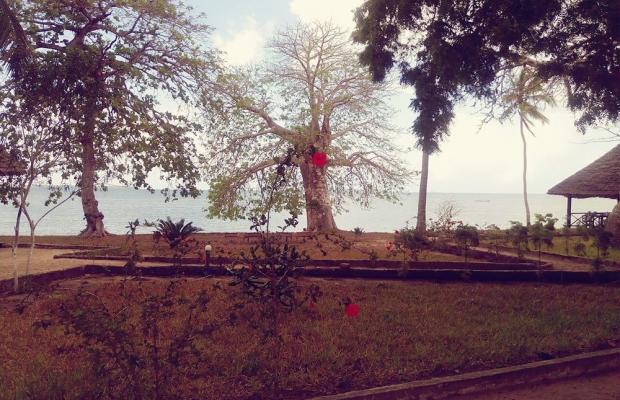 фотографии отеля Menai Bay Beach Bungalows изображение №7