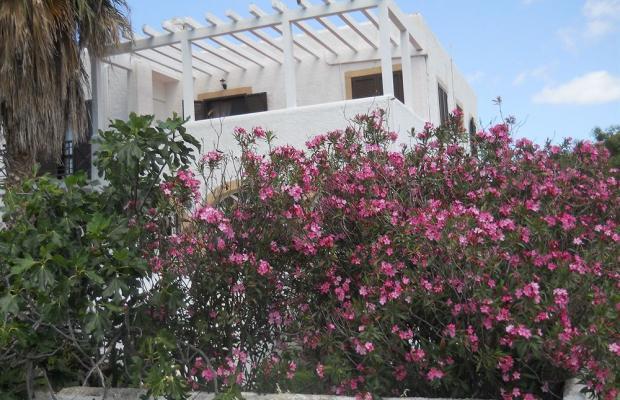 фотографии отеля Joanna Apartments Hotel изображение №23