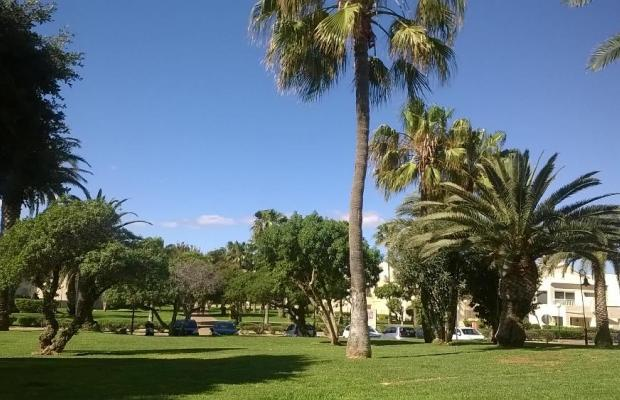 фотографии ClubHotel Riu Oliva Beach Resort изображение №24