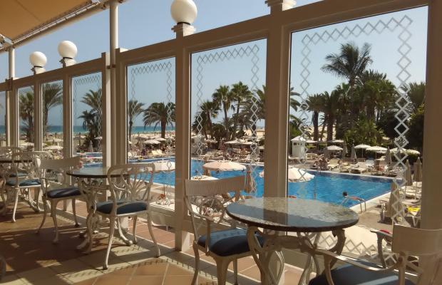 фотографии отеля ClubHotel Riu Oliva Beach Resort изображение №15