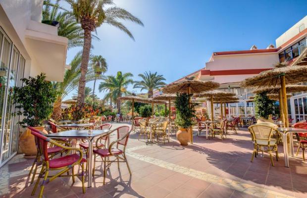 фотографии отеля SBH Fuerteventura Playa изображение №23