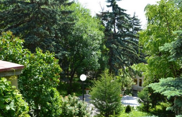 фото отеля имени С.М. Кирова (imeni S.M. Kirova) изображение №33
