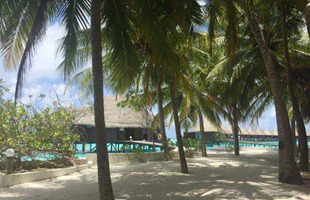 фотографии отеля Thulhagiri Island Resort and Spa изображение №15