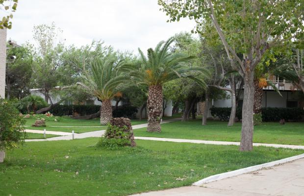 фото Verde & Mare bungalows (ех. Onar) изображение №10