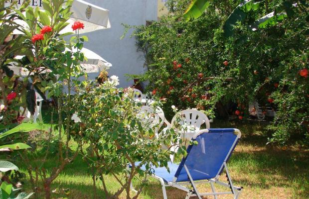 фото отеля Joanna изображение №21