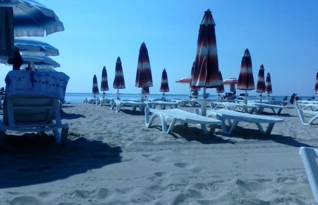 фотографии отеля Dobrotitsa (Добротица) изображение №11