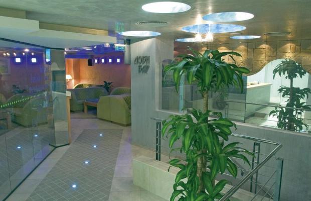 фотографии отеля Hotel Divesta изображение №3