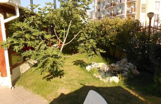фотографии отеля Sunny Holiday (Сани Холидей) изображение №3