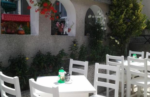 фотографии Tonus Guest House изображение №8