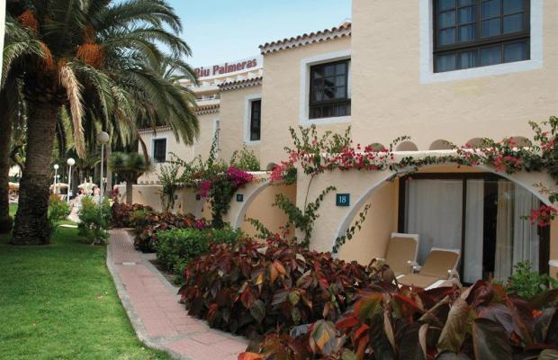 фото отеля Hotel Riu Palmeras / Riu Palmitos изображение №21