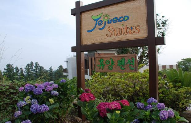 фотографии Jejueco Suites изображение №32