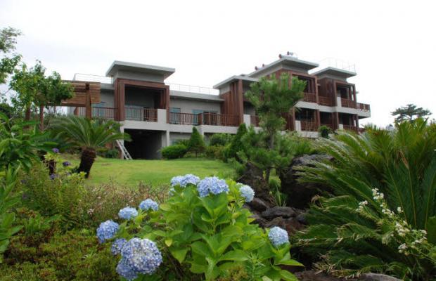 фотографии Jejueco Suites изображение №8