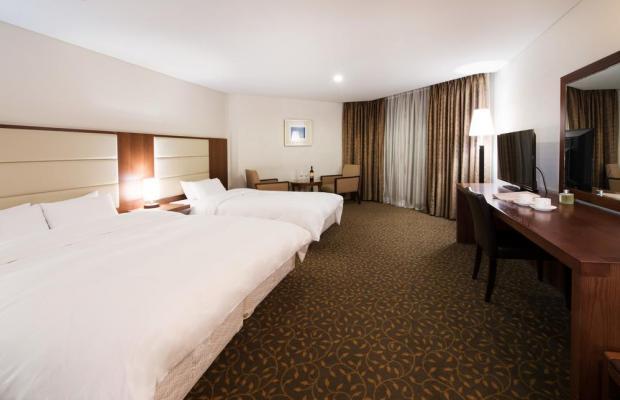 фотографии отеля  Hotel Prima изображение №35