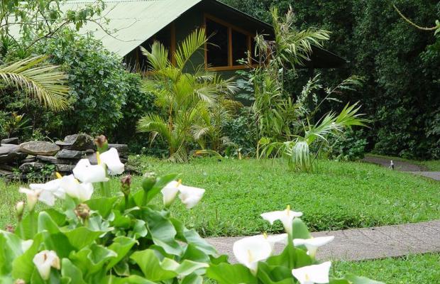 фотографии Cloud Forest Lodge изображение №24