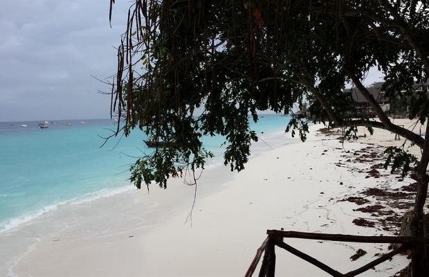фотографии отеля Baobab Beach Bungalows изображение №15