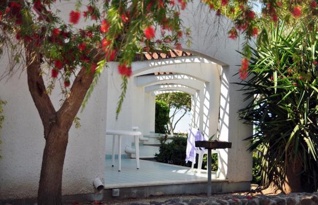 фотографии отеля Ein Gev Holiday Resort изображение №15
