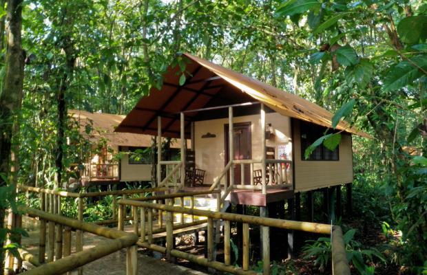 фотографии Evergreen lodge изображение №56