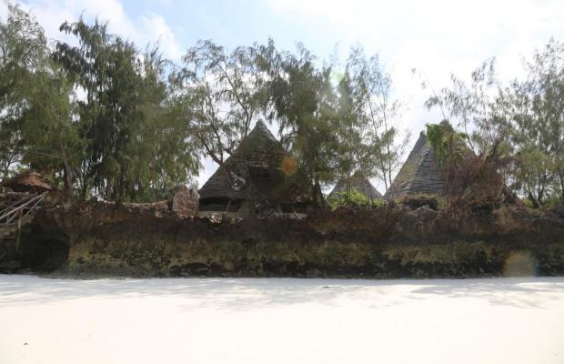 фотографии отеля Unguja lodge изображение №19