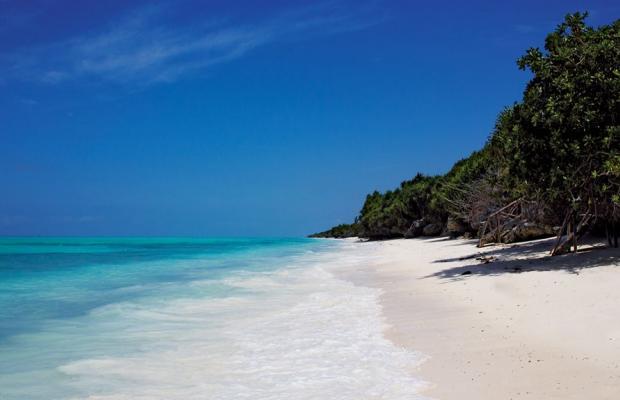 фотографии Zanzibar Dolphin View Paradise Resort & Spa изображение №8