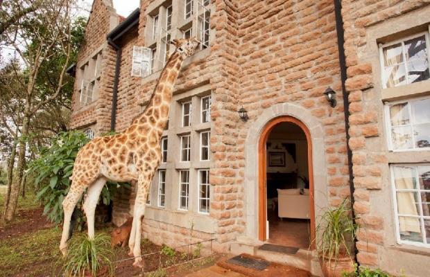 фото Giraffe Manor изображение №22