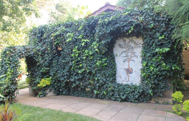фотографии отеля La Mada изображение №7