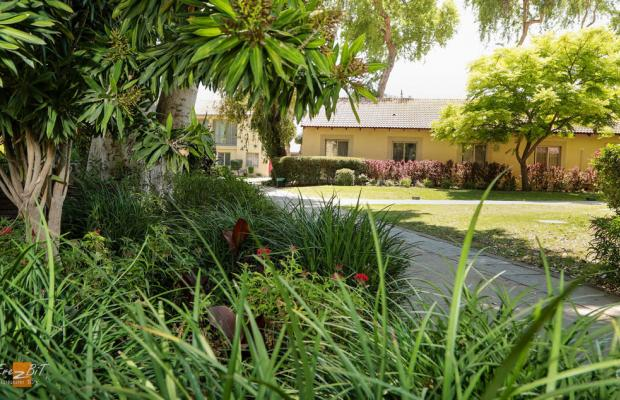 фото Ohalo Manor изображение №34