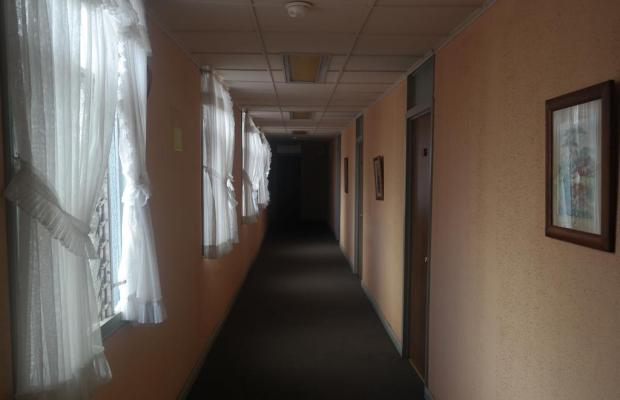 фотографии отеля Hotel Vesuvio изображение №15