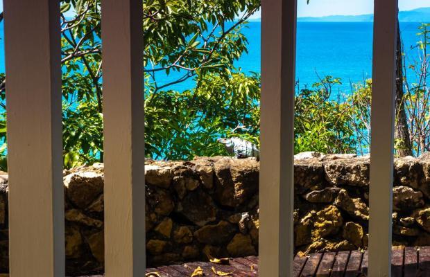 фото Punta Leona изображение №34
