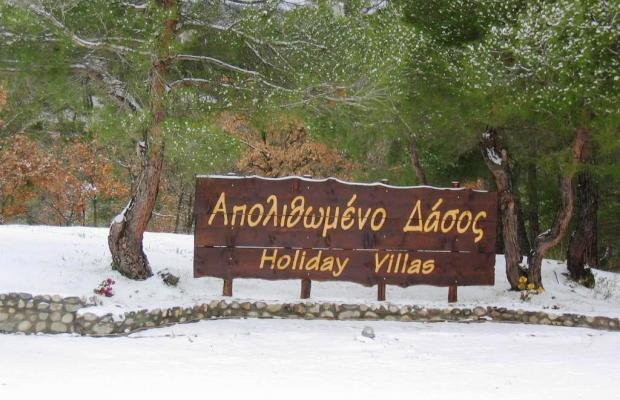 фотографии отеля Apolithomeno Dasos Holiday Villas изображение №15