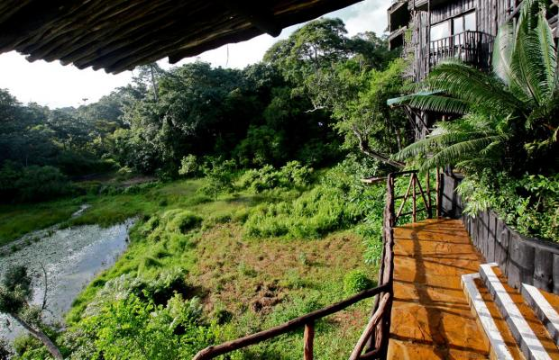 фотографии отеля Shimba Rainforest Lodge изображение №15