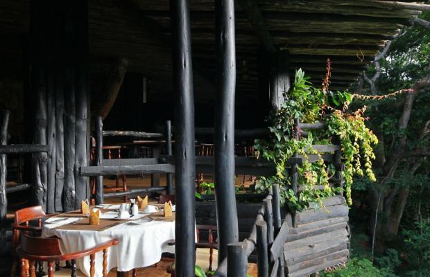 фото отеля Shimba Rainforest Lodge изображение №5